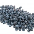 Stock Photo: Pile of blueberries