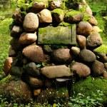 viejo cementerio, vieja tumba — Foto de Stock