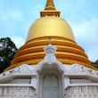 Golden Temple in Dambulla, Sri Lanka — Stock Photo