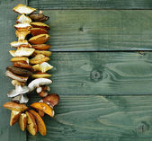 Dried mushrooms on a string. — Stock Photo