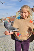 Little girl feeds doves in the city. — Stock Photo