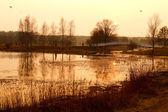 Doğal göl günbatımı üzerinde. — Stok fotoğraf