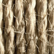 Background of straw. Close-up. — Stock Photo #24960853