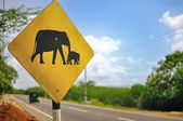 Road Sign: Caution Elephants. — Stock Photo