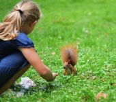 Squirrel and girl — Stock Photo