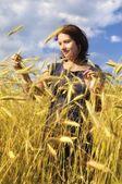 Woman on field of grain. — Stock Photo