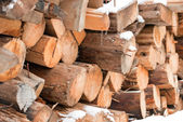 Firewood stacked in a pile in the winter — Stock fotografie