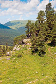 Piękne lato góra krajobraz przeciw błękitne niebo — Zdjęcie stockowe