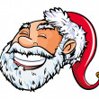 Cartoon smiling Santa head. — Stock Vector