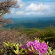 Stock Photo: Blue Ridge Mountains