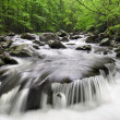 Smoky Mountains Waterfall - Stockfoto