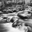 Foto de Stock  : Mountain Stream