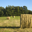 Royalty-Free Stock Photo: Hay Bales