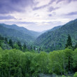 Smoky Mountains — Stock Photo #16306799