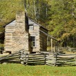 Stock Photo: Log cabin, cades cove, great smoky mountains national park
