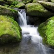 Mossy waterfall - Stockfoto