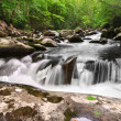 smoky mountain waterfall — Stock Photo