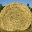 Hay Bale — Stock Photo #16308699