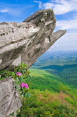 Blue RIdge Parkway — Stock Photo