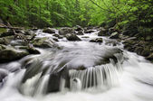 Smoky Mountains Waterfall — Stock Photo