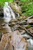 Spruce Flat Falls — Stock Photo