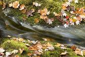 Herfst waterval — Stockfoto
