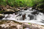 Smoky Mountain Waterfall — Stock Photo