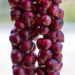 Hanging Red Onions — Stock Photo