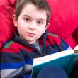 Royalty-Free Stock Photo: Kid Reading Book on the Couch