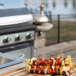 Skewrs and Barbecue — Stock Photo #23295870