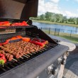 Shish Kebabs are on the BBQ — Stock Photo