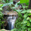 Peaceful rainforest waterfall — Stock Photo