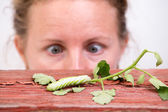 Woman watching a caterpillar — Stock Photo