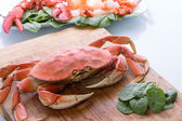 Prepearing Dungeness Crab and Red Lobster — Stock Photo
