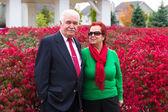 Happy and Health Senior Couple Enjoying Autumn — Stock Photo