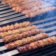 Cooking AdanLamb Kebabs on Restaurant Style Grill — Stock Photo #35361525
