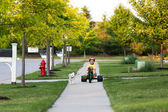 Walking the Dog with Tricycle in the Neighborhood — Stok fotoğraf