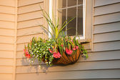 Flower Box with Coco Liner with nice arrangement infront of the — Stock Photo
