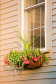 Flower Box with Coco Liner with nice arrangement infront of the — Foto de Stock