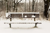 Resting in Winter — Stock Photo