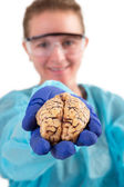 Pathologist holding a brain in her hand — Stock Photo