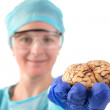 Stock Photo: Pathologist holding brain in her hand