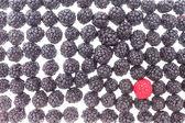Background of fresh blackberries and one raspberry — Stock Photo