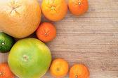 Mixed citrus fruit border — Stock Photo