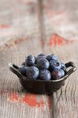 Bowl of fresh ripe autumn blueberries — Stock Photo