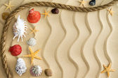 Pebbles and seashells on rippling sand with a rope — Stock Photo