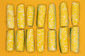 Fresh corncobs lined up on a yellow background — Stock Photo