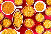 Several bowls of cheese macaroni served conceptually — Stock Photo
