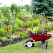 Landscaping the garden — Stock Photo #47999121