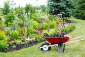 Landscaping the garden — Stock Photo
